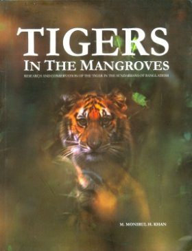 Tigers in the Mangroves