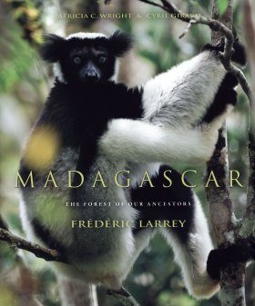 Madagascar: The Forest of Our Ancestors