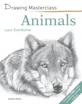 Drawing Masterclass: Animals
