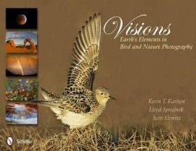 Visions: Earth's Elements in Bird and Nature Photography