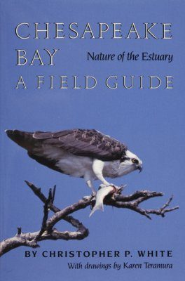 Chesapeake Bay Nature of the Estuary