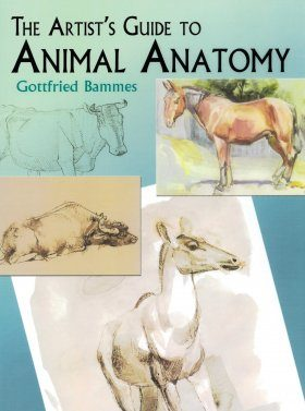 The Artist's Guide to Animal Anatomy