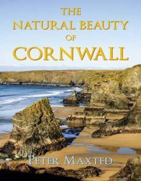 The Natural Beauty of Cornwall