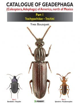 Catalogue of Geadephaga (Coleoptera, Adephaga) of America, North of Mexico, Part 1