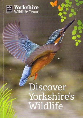 Discover Yorkshire's Wildlife