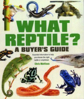 What Reptile
