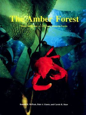 Amber Forest