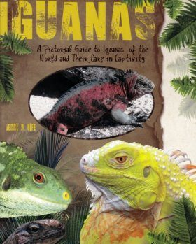 Iguanas: A Pictorial Guide to Iguanas of the World and Their Care in Captivity