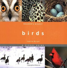 Birds: A Visual Guide