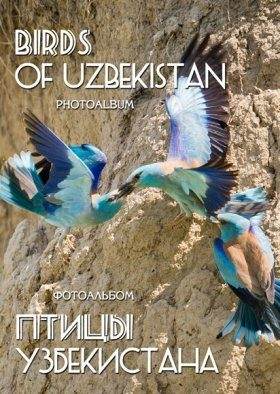 Birds of Uzbekistan: Photoalbum