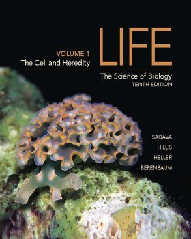 Life: The Science of Biology, Volume 1