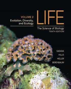 Life: The Science of Biology, Volume 2