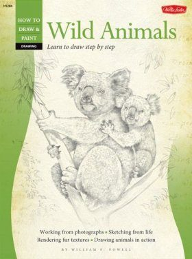 How to Draw & Paint Wild Animals
