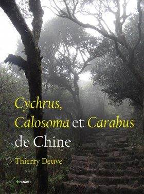 Cychrus, Calosoma et Carabus de Chine [Cychrus, Calosoma and Carabus of China]
