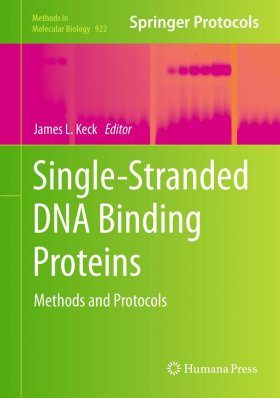 Single-stranded DNA Binding Proteins