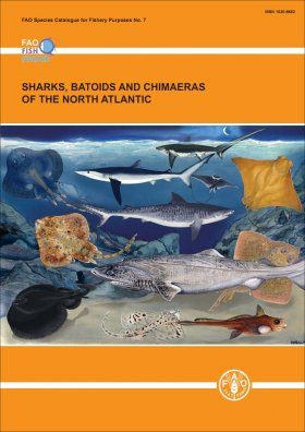 Sharks, Batoids and Chimaeras of the North Atlantic