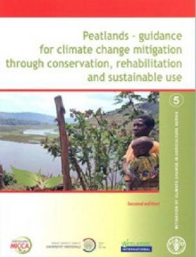 Peatlands: Guidance for Climate Change Mitigation Through Conservation, Rehabilitation and Sustainable Use