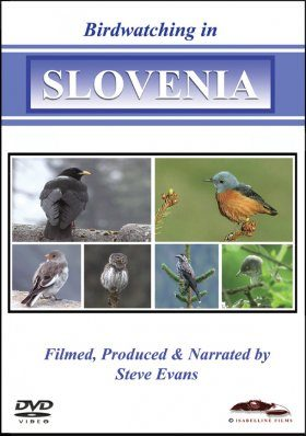 Birdwatching in Slovenia (All Regions)
