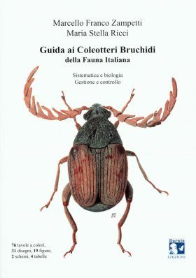Guida ai Coleotteri Bruchidi della Fauna Italiana: Sistematica e Biologia, Gestione e Controllo [Guide to Bruchidae Beetles of the Italian Fauna: Systematics, Biology, Management and Control]
