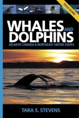 Whales and Dolphins: Atlantic Canada & Northeast United States