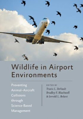 Wildlife in Airport Environments