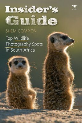 Top Wildlife Photography Spots in South Africa