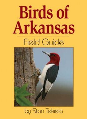 Birds of Arkansas Field Guide