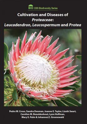 Cultivation and Diseases of Proteaceae