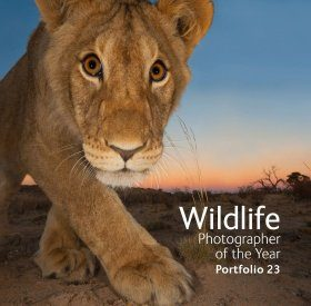 Wildlife Photographer of the Year, Portfolio 23
