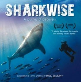 Sharkwise: A Journey of Discovery