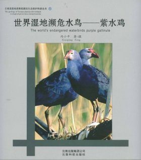 The World's Endangered Waterbirds Purple galinule [Chinese]