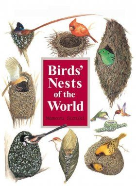 Birds' Nests of the World