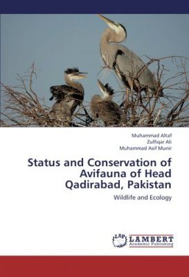 Status and Conservation of Avifauna of Head Qadirabad, Pakistan