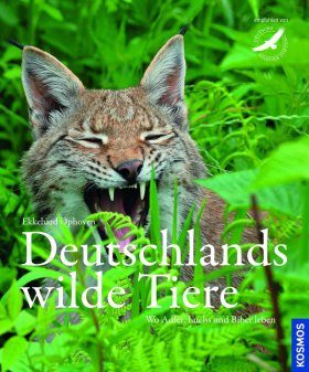Deutschlands Wilde Tiere: Wo Adler, Dachs und Biber Leben [Germany's Wild Animals: Where Eagles, Badgers and Beavers Live]