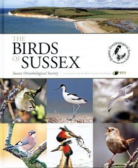 The Birds of Sussex