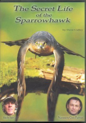 The Secret Life of the Sparrowhawk DVD (Region 1)