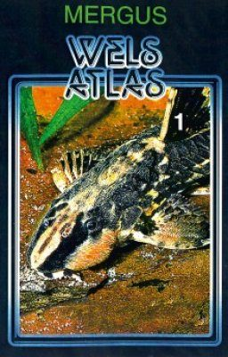 Wels Atlas, Band 1 [Catfish Atlas, Volume 1]