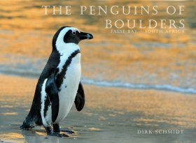 The Penguins of Boulders