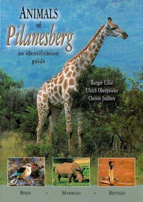 Animals of Pilanesberg
