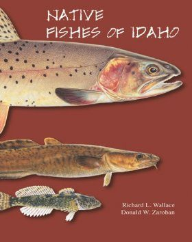 Native Fishes of Idaho