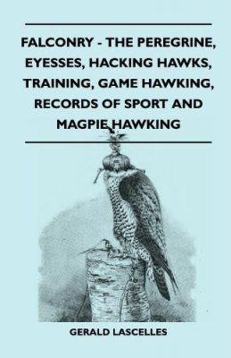 Falconry: The Peregrine, Eyesses, Hacking Hawks, Training, Game Hawking, Records Of Sport And Magpie Hawking