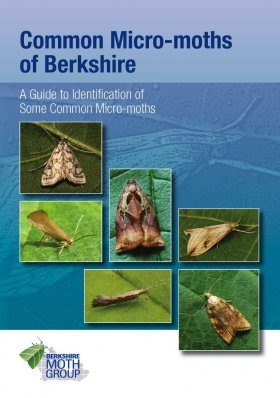 Common Micro-Moths of Berkshire