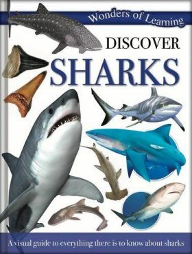 Wonders of Learning: Discover Sharks