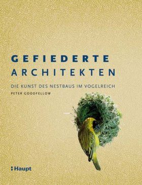 Gefiederte Architekten