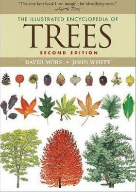 The Illustrated Encyclopedia of Trees