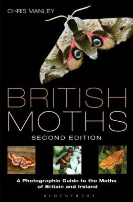 British Moths