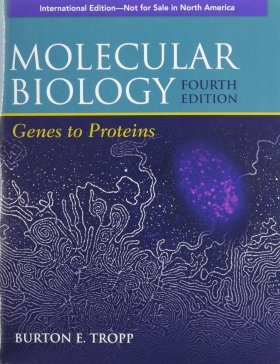 Molecular Biology (International Edition)