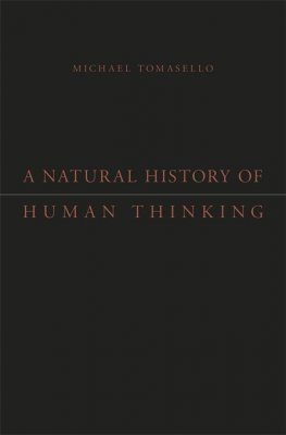 A Natural History of Human Thinking