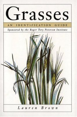 Grasses: An Identification Guide