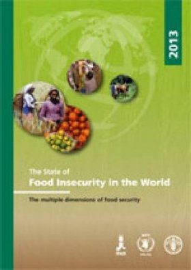 State of Food Insecurity in the World 2013